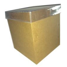 Caixa para Panetone 750 a 1Kg 17x17x20 Tampa PVC Com 10